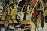 The Bugman's work space. 2002 (3)-brouckarova_pracovna_2002_3.jpg