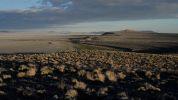 -herwig_turk_landscape.jpg
