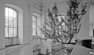Charlie Citron: without title (Blue tree) — convent (1994). Fotograf: Daniel Šperl