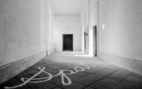 Judith Fleishman: Spát — Fungus – průzkum místa (1994). Photographer: Daniel Šperl