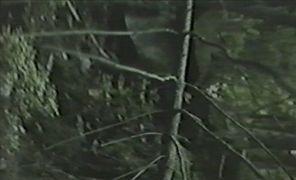 Miloš Šejn: Landscape — video snap (1994). Photographer: author´s archive