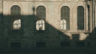 (2018)Fotograf: Dominik Žižka