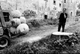 Erik Wijntjes: Wooden Sculptures (1993). Photographer: Gert de Ruiter